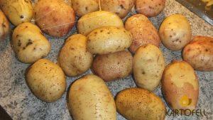 Картофель удача отзывы
