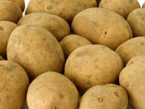 картофель скарб описание сорта