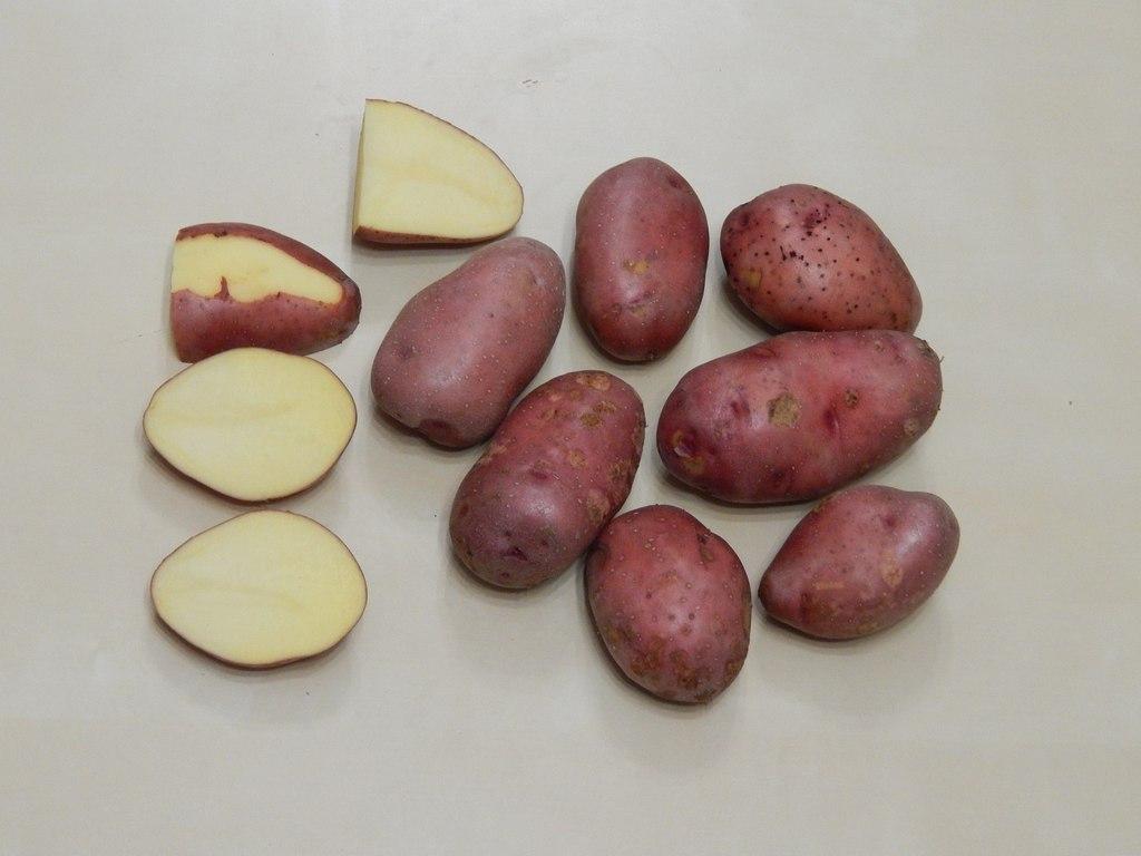 журавинка картофель