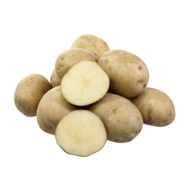 голубизна картофель описание