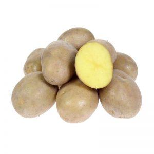 картофель скарб отзывы