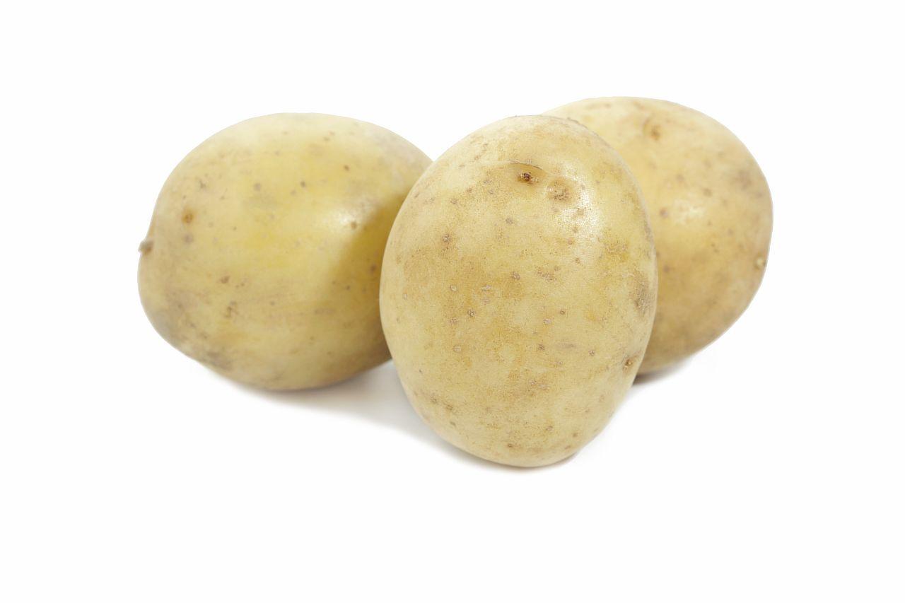 картофель гала описание сорта фото отзывы