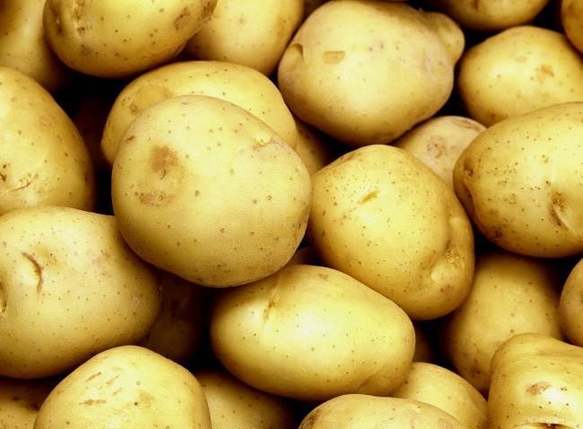 картофель тулеевский описание сорта фото отзывы